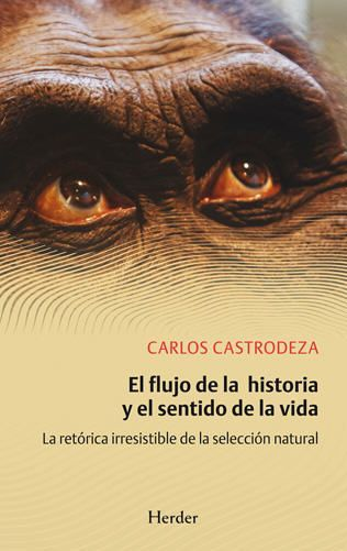castrodeza_el-flujo-de-la-historia-2