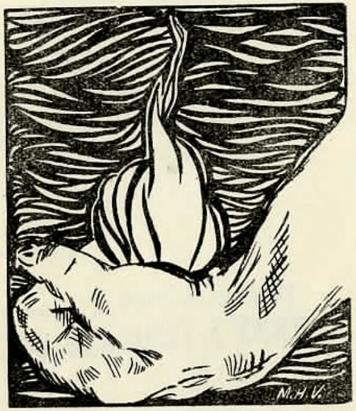 ilustración del libro Llanto por la vida transitoria de Luis Octavio Madero