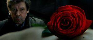 Imagen de La rosa, símbolo de la experiencia mística de V