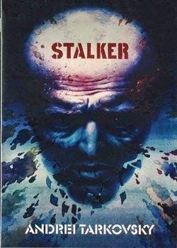 Cartel Stalker
